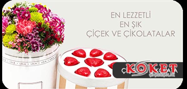 https://www.koketcicekcilik.com/